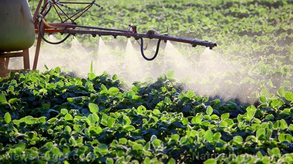 Tại sao nông dân cần phải sử dụng cách phun thuốc trừ sâu