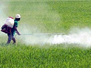 sử dụng máy phun thuốc trừ sâu hợp với quy mô trồng trọt