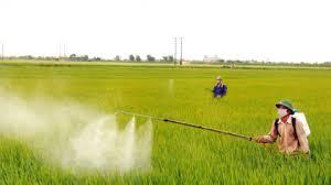 Tại sao nên sử dụng thiết bị máy phun thuốc vào nông nghiệp